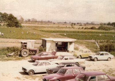 Market garden 1970s_2