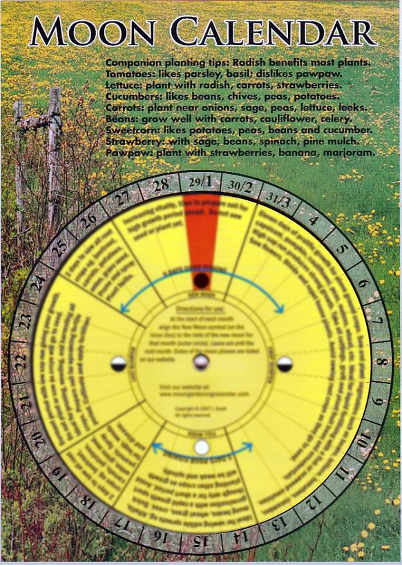 Calendar Garden Design : Lunar calendar gardening fasci garden